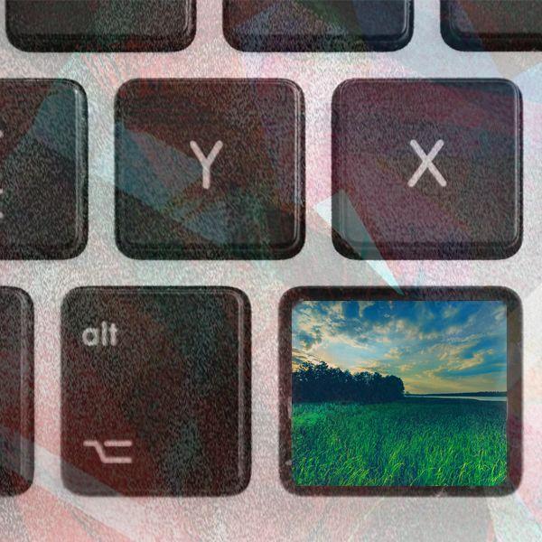 Abandoning the world online?