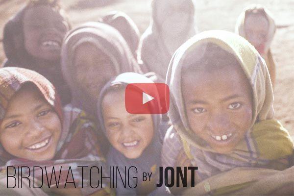 Birdwatching Video - Sneak Peek